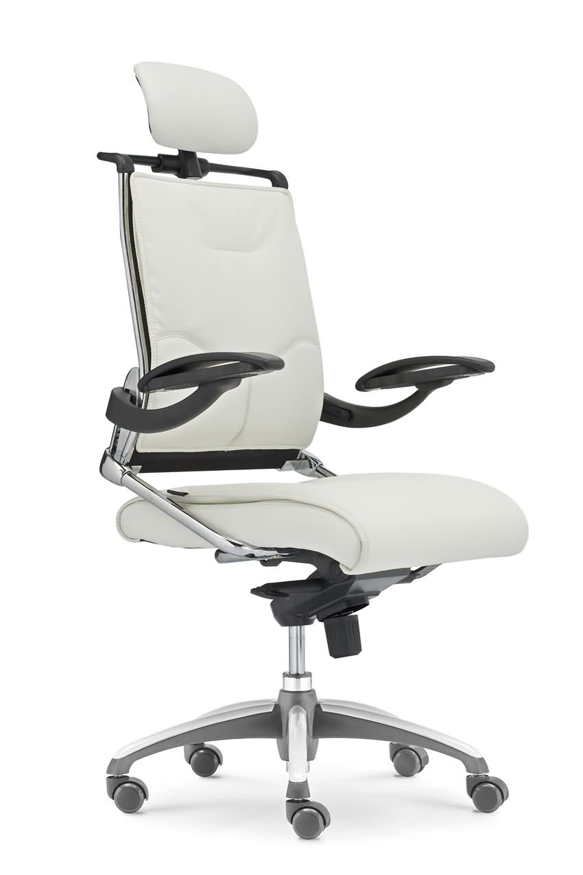 BIFMA leather modern design manager chair