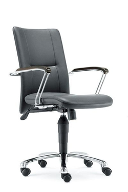 Mid Back Office Executive Chair d29as